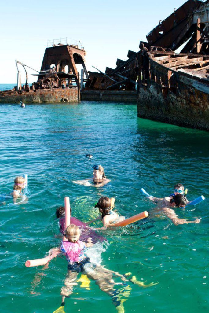 tangalooma wrecks snorkel dive